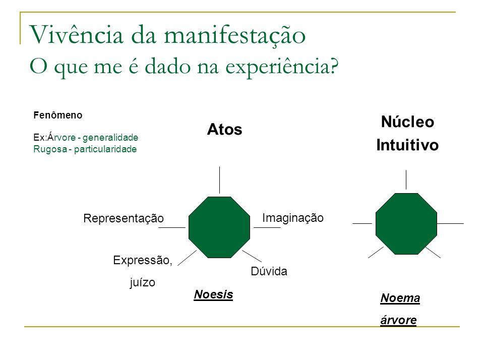 Vivência da manifestação O que me é dado na experiência? Fenômeno Ex:Árvore - generalidade Rugosa - particularidade Atos Núcleo Intuitivo Noesis Repre
