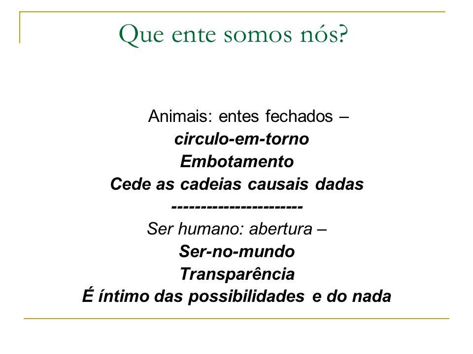 Que ente somos nós? Animais: entes fechados – circulo-em-torno Embotamento Cede as cadeias causais dadas ----------------------- Ser humano: abertura