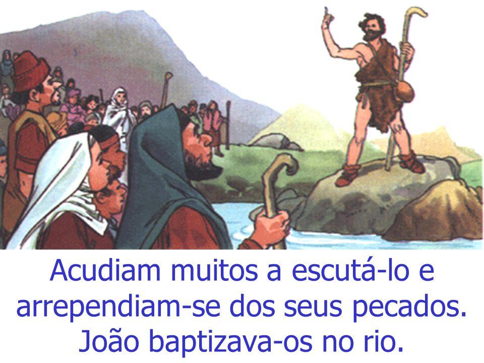 João ia vestido de pêlo de camelo e só comia o que encontrava no deserto. Pregava: Preparai o caminho do Senhor.