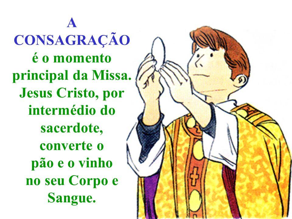Na ARESENTAÇÃO DAS OFERENDAS, O sacerdote apresenta o pão e o vinho.