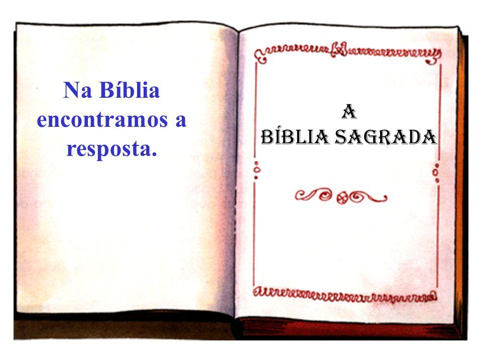 Na Bíblia encontramos a resposta. A Bíblia Sagrada