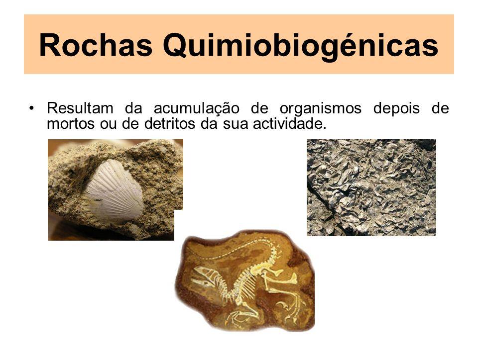 Rochas Quimiobiogénicas Resultam da acumulação de organismos depois de mortos ou de detritos da sua actividade.