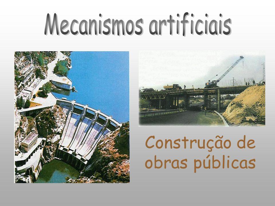 Construção de obras públicas