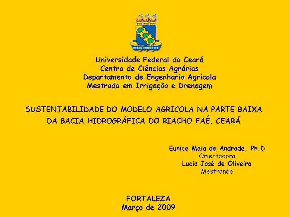Universidade Federal do Ceará Centro de Ciências Agrárias Departamento de Engenharia Agrícola Mestrado em Irrigação e Drenagem SUSTENTABILIDADE DO MOD