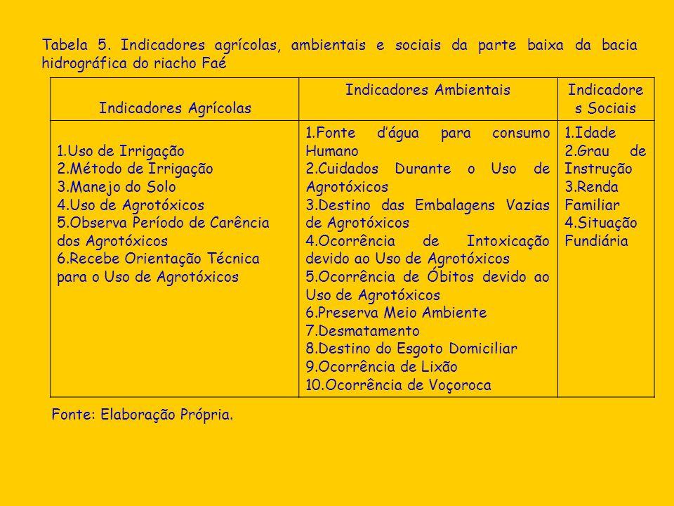 Tabela 5. Indicadores agrícolas, ambientais e sociais da parte baixa da bacia hidrográfica do riacho Faé Indicadores Agrícolas Indicadores AmbientaisI