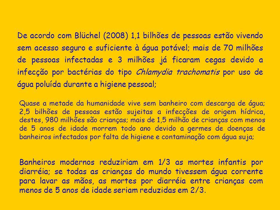 De acordo com Blüchel (2008) 1,1 bilhões de pessoas estão vivendo sem acesso seguro e suficiente à água potável; mais de 70 milhões de pessoas infecta