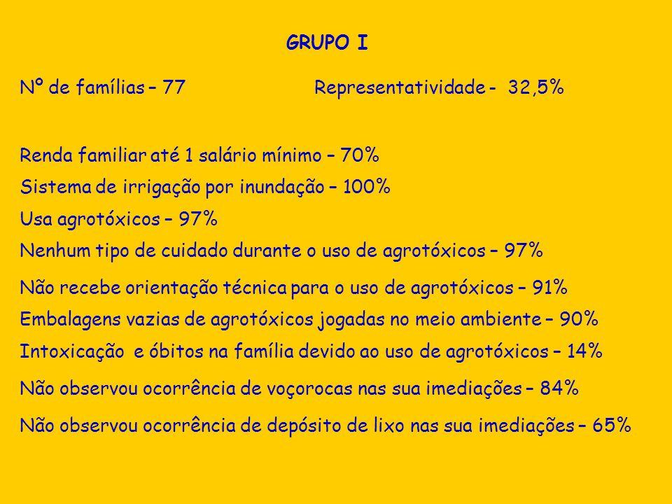 Não observou ocorrência de depósito de lixo nas sua imediações – 65% GRUPO I Nº de famílias – 77 Representatividade - 32,5% Renda familiar até 1 salár