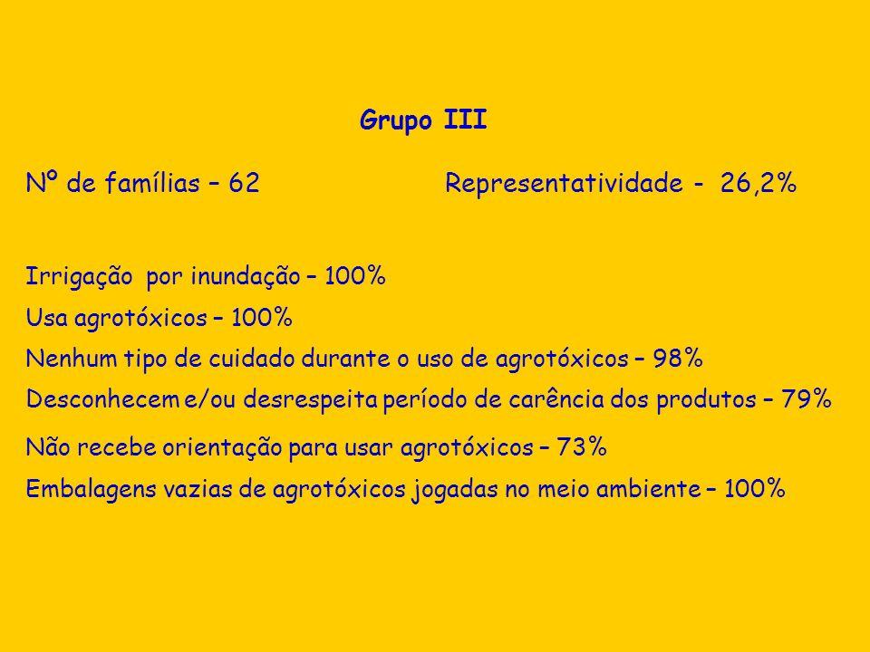 Grupo III Nº de famílias – 62 Representatividade - 26,2% Irrigação por inundação – 100% Usa agrotóxicos – 100% Nenhum tipo de cuidado durante o uso de