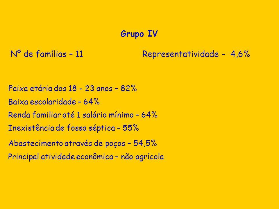 Grupo IV Nº de famílias – 11 Representatividade - 4,6% Faixa etária dos 18 - 23 anos – 82% Baixa escolaridade – 64% Renda familiar até 1 salário mínim