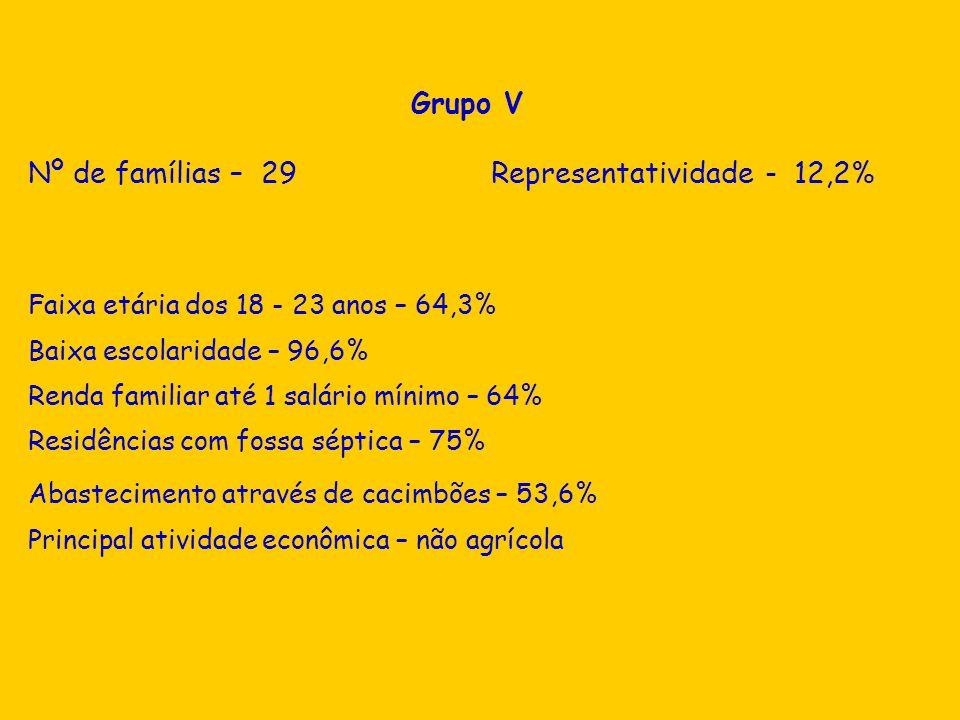 Grupo V Nº de famílias – 29 Representatividade - 12,2% Faixa etária dos 18 - 23 anos – 64,3% Baixa escolaridade – 96,6% Renda familiar até 1 salário m
