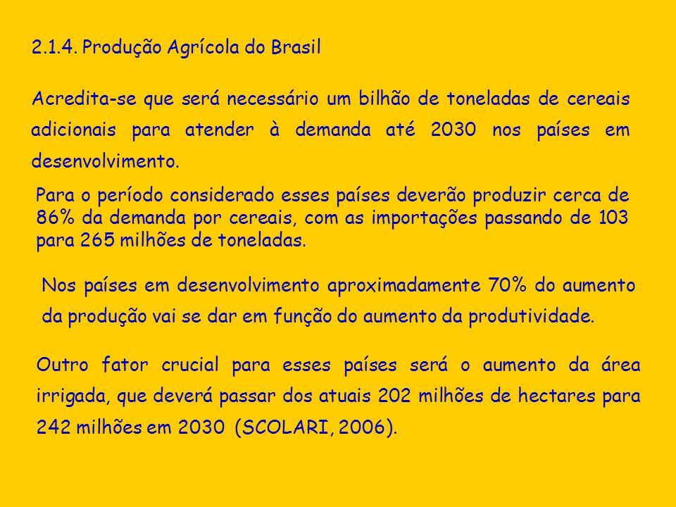 2.1.4. Produção Agrícola do Brasil Outro fator crucial para esses países será o aumento da área irrigada, que deverá passar dos atuais 202 milhões de