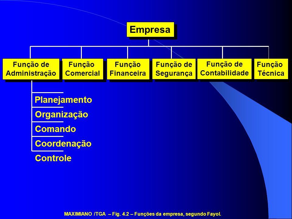 Administração Geral P&D Finanças Marketing Legal Serviços Centrais Serviços Centrais MAXIMIANO /TGA – Fig.