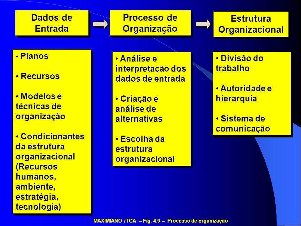 Dados de Entrada Dados de Entrada Processo de Organização Estrutura Organizacional Planos Recursos Modelos e técnicas de organização Condicionantes da
