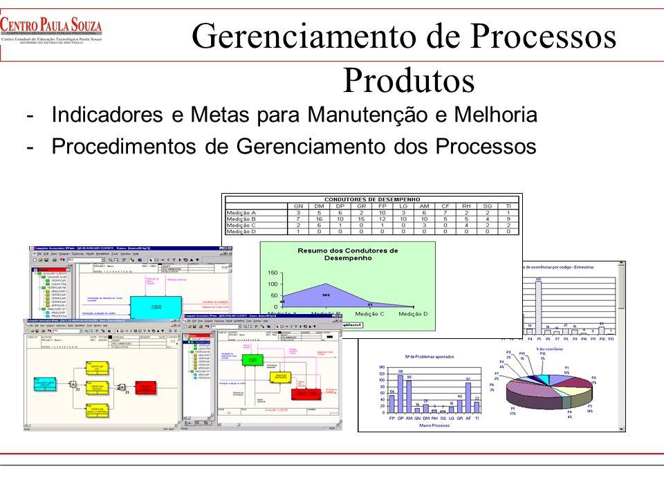 Gerenciamento de Processos Estruturação Estabelecimento do Owner de cada Processo Estabelecimento do Comitê Estabelecimento de Indicadores Estabelecim