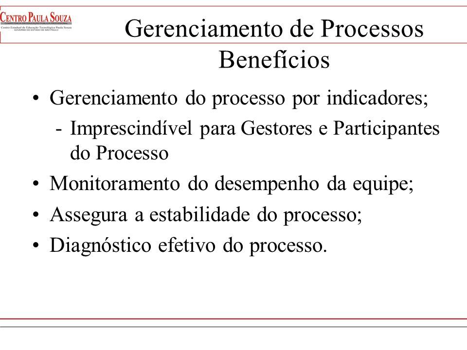 Gerenciamento de Processos Produtos -Indicadores e Metas para Manutenção e Melhoria -Procedimentos de Gerenciamento dos Processos