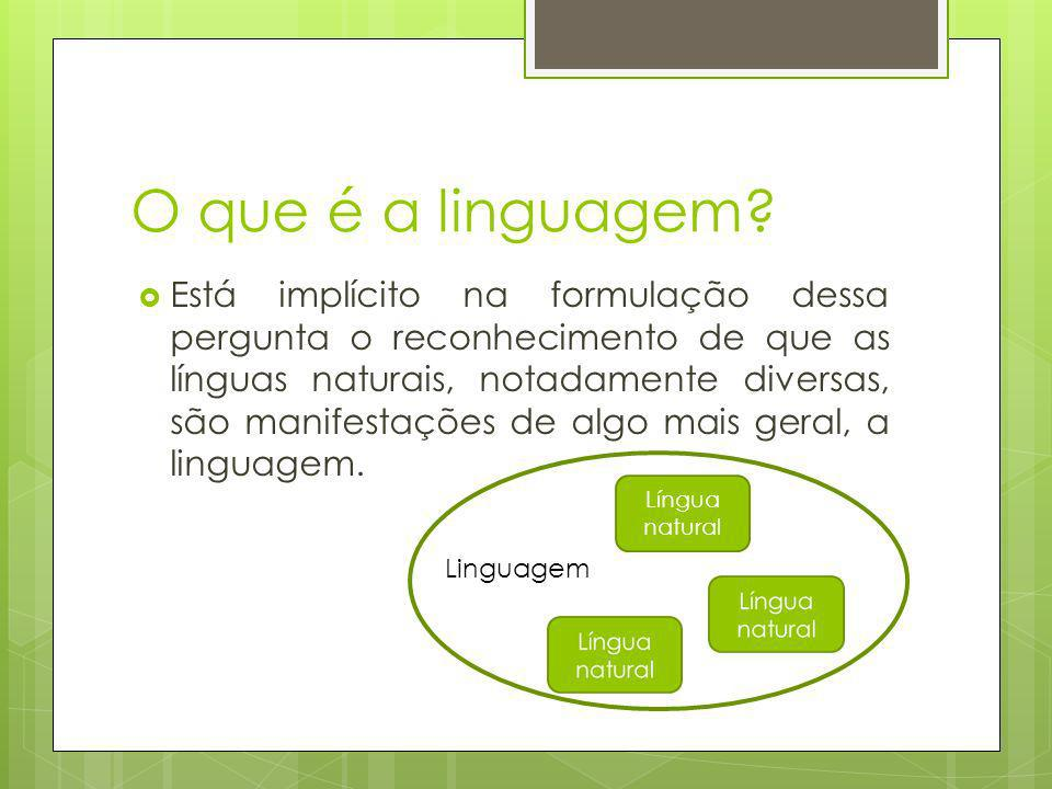 O que é a linguagem? Está implícito na formulação dessa pergunta o reconhecimento de que as línguas naturais, notadamente diversas, são manifestações