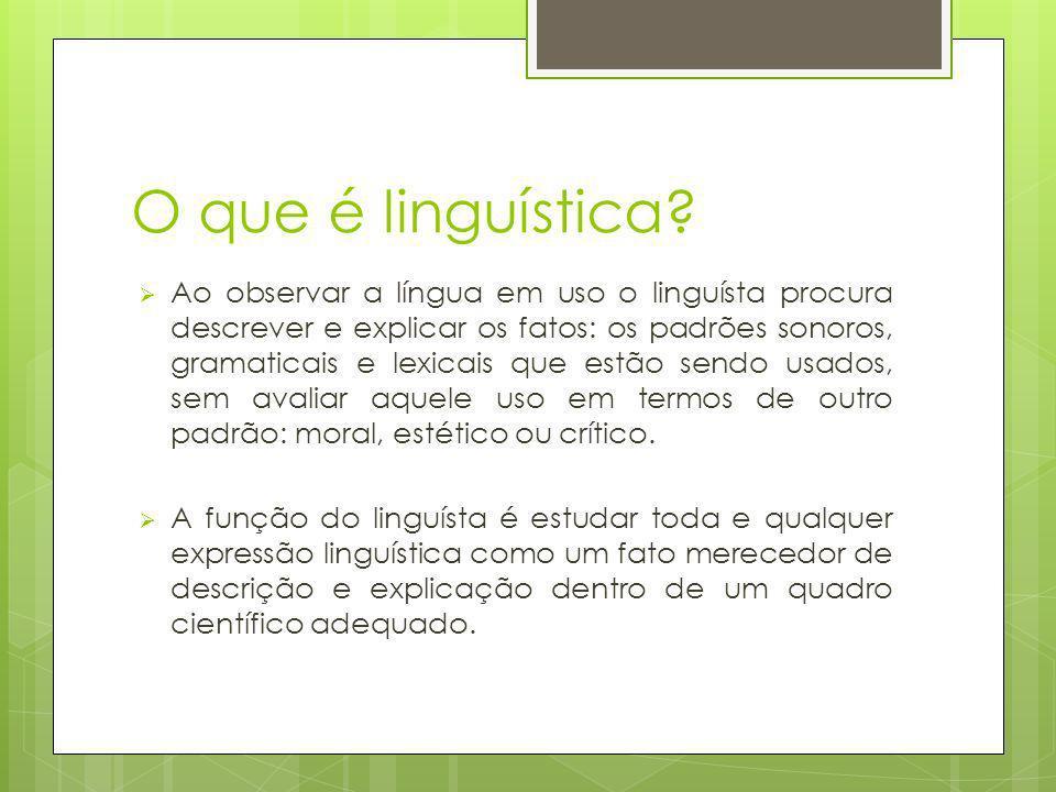 O que é linguística? Ao observar a língua em uso o linguísta procura descrever e explicar os fatos: os padrões sonoros, gramaticais e lexicais que est