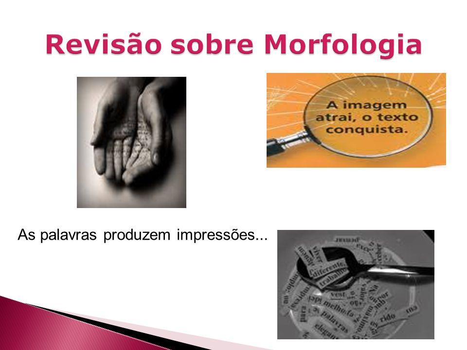 Os elementos da morfologia: O radical é a forma mínima que indica o sentido básico de uma palavra.
