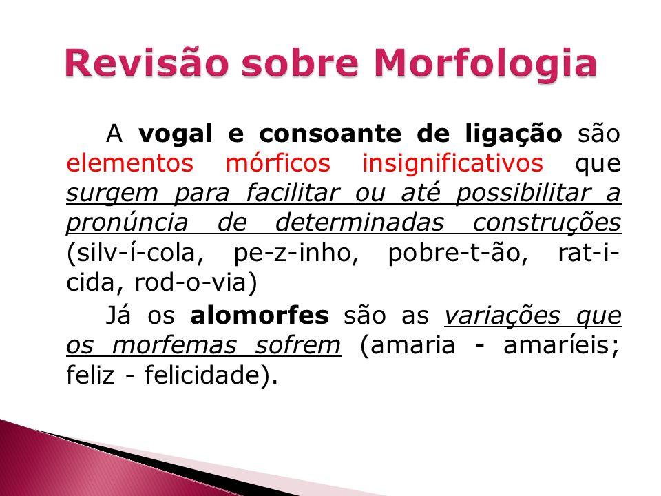A vogal e consoante de ligação são elementos mórficos insignificativos que surgem para facilitar ou até possibilitar a pronúncia de determinadas const