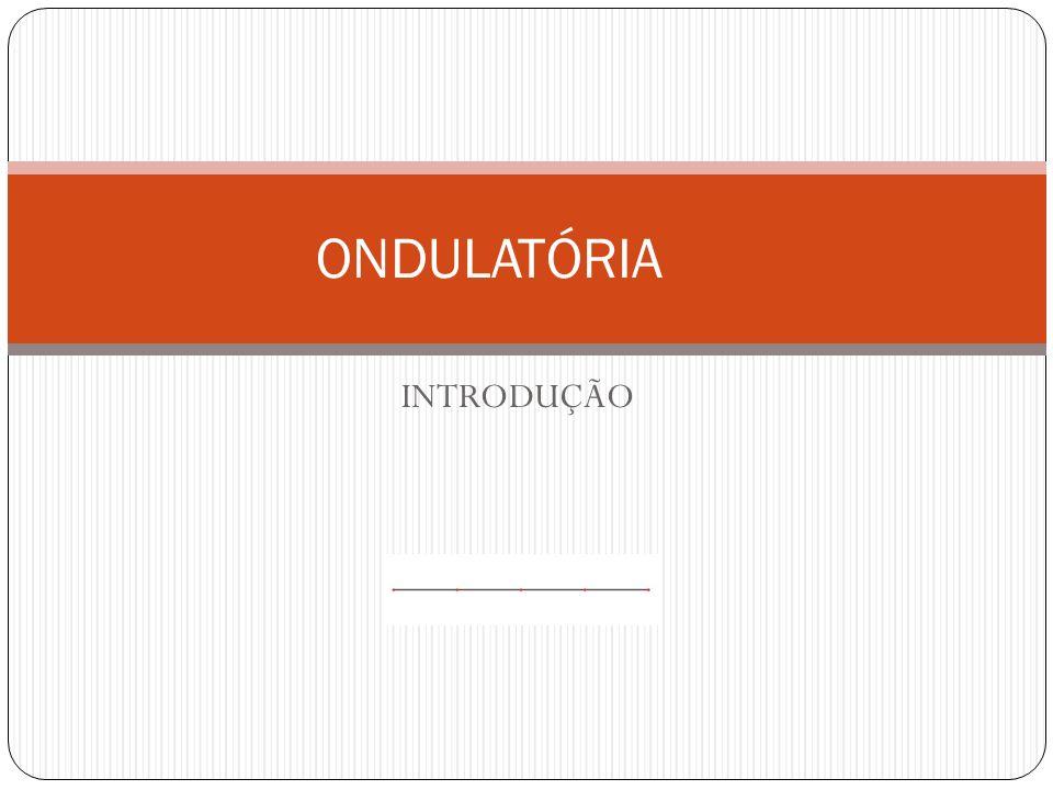 INTRODUÇÃO ONDULATÓRIA