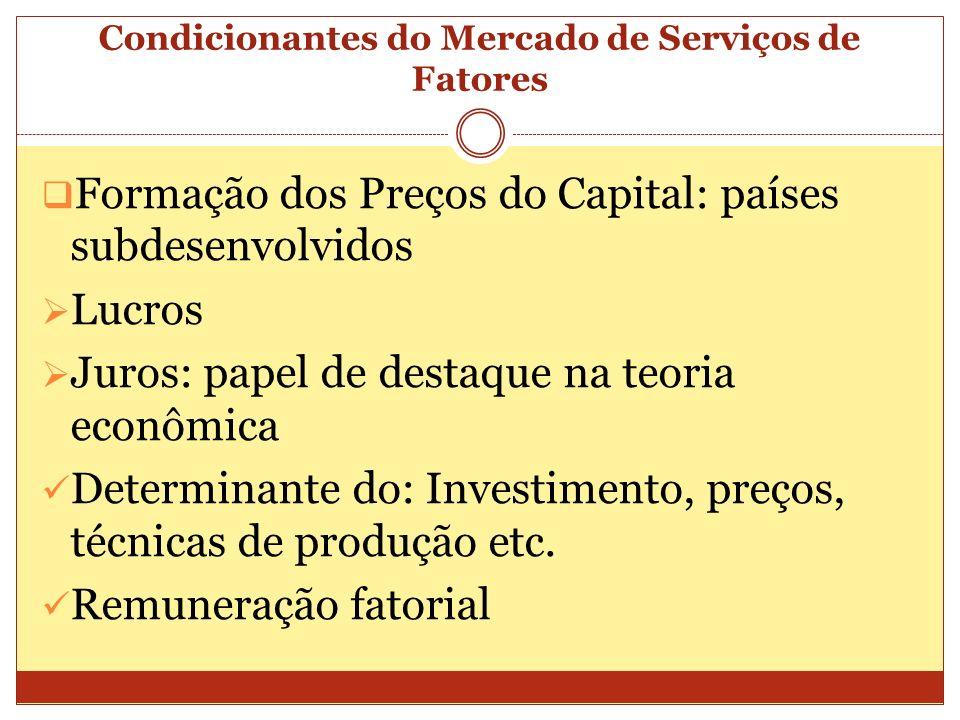 Condicionantes do Mercado de Serviços de Fatores Formação dos Preços do Capital: países subdesenvolvidos Lucros Juros: papel de destaque na teoria eco