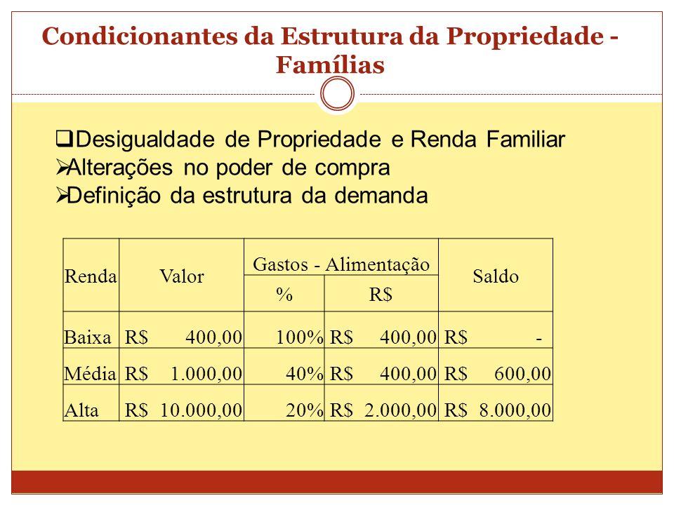 Condicionantes da Estrutura da Propriedade - Famílias Desigualdade de Propriedade e Renda Familiar Alterações no poder de compra Definição da estrutur