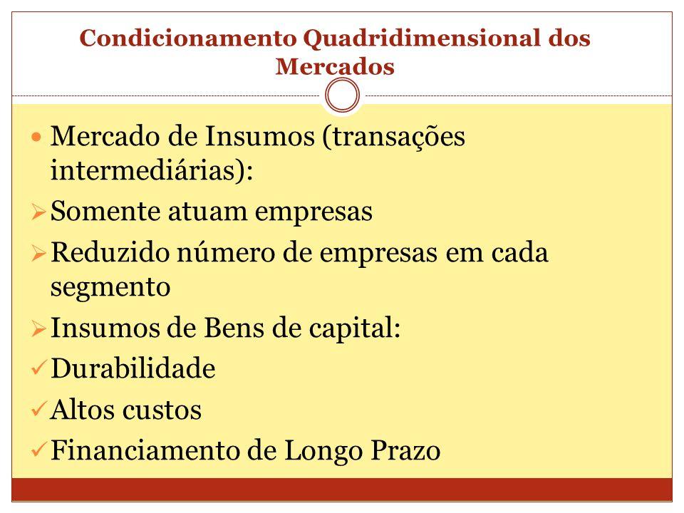 Condicionamento Quadridimensional dos Mercados Mercado de Insumos (transações intermediárias): Somente atuam empresas Reduzido número de empresas em c