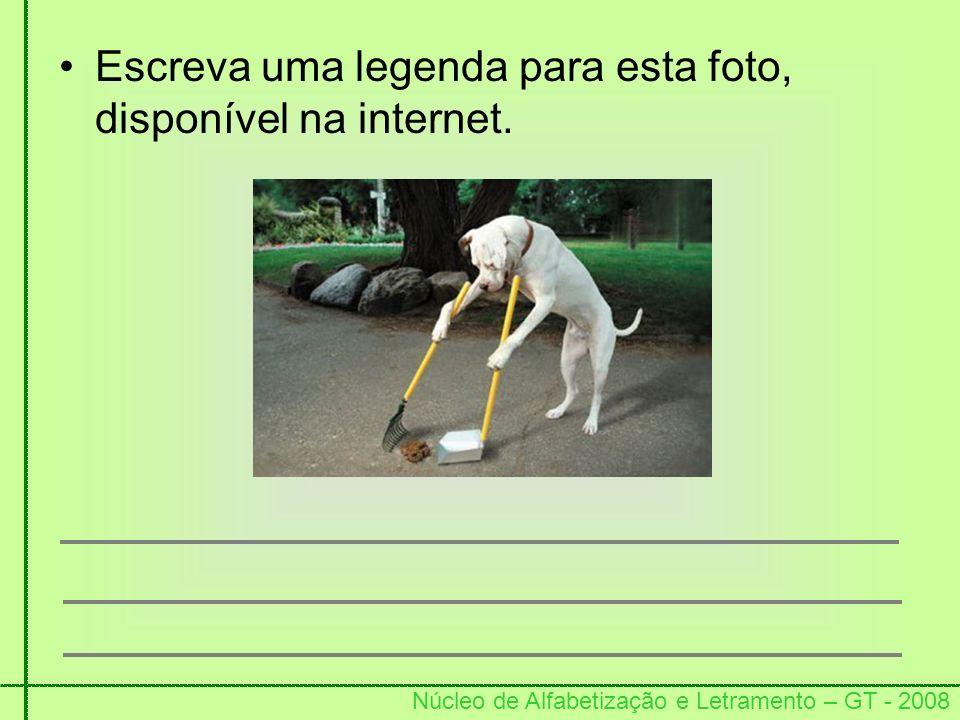 Núcleo de Alfabetização e Letramento – GT - 2008 Escreva uma legenda para esta foto, disponível na internet.