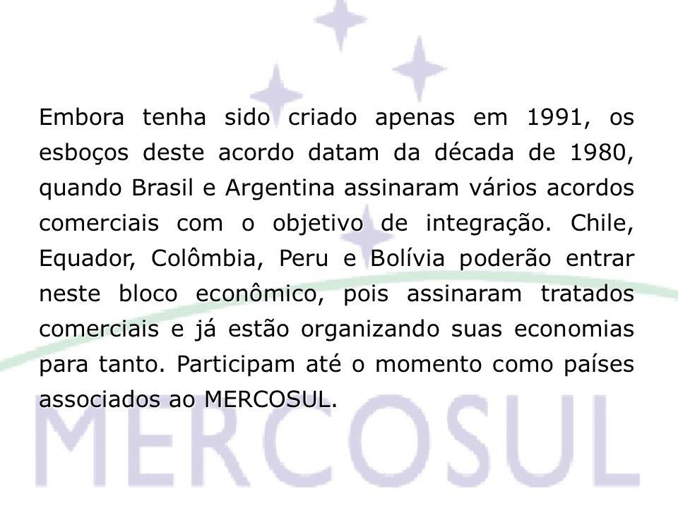 Embora tenha sido criado apenas em 1991, os esboços deste acordo datam da década de 1980, quando Brasil e Argentina assinaram vários acordos comerciai