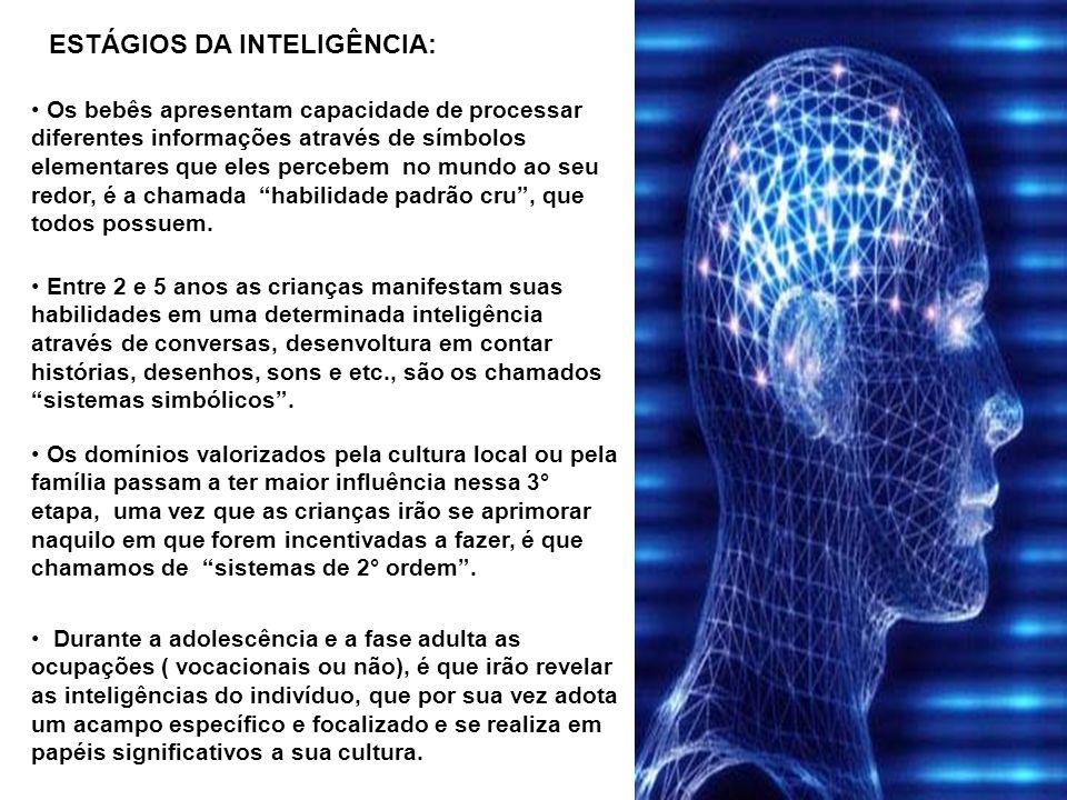 ESTÁGIOS DA INTELIGÊNCIA: Durante a adolescência e a fase adulta as ocupações ( vocacionais ou não), é que irão revelar as inteligências do indivíduo,