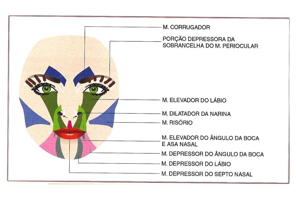 Sorriso gengival Abaixamento da ponta nasal, formando ruga transversal na região do lábio superior ao sorrir: – Participação do depressor do septo nasal – Aplicar de 3-5 U (mesmo tto para levantar a ponta nasal, mas de 3-8 U)