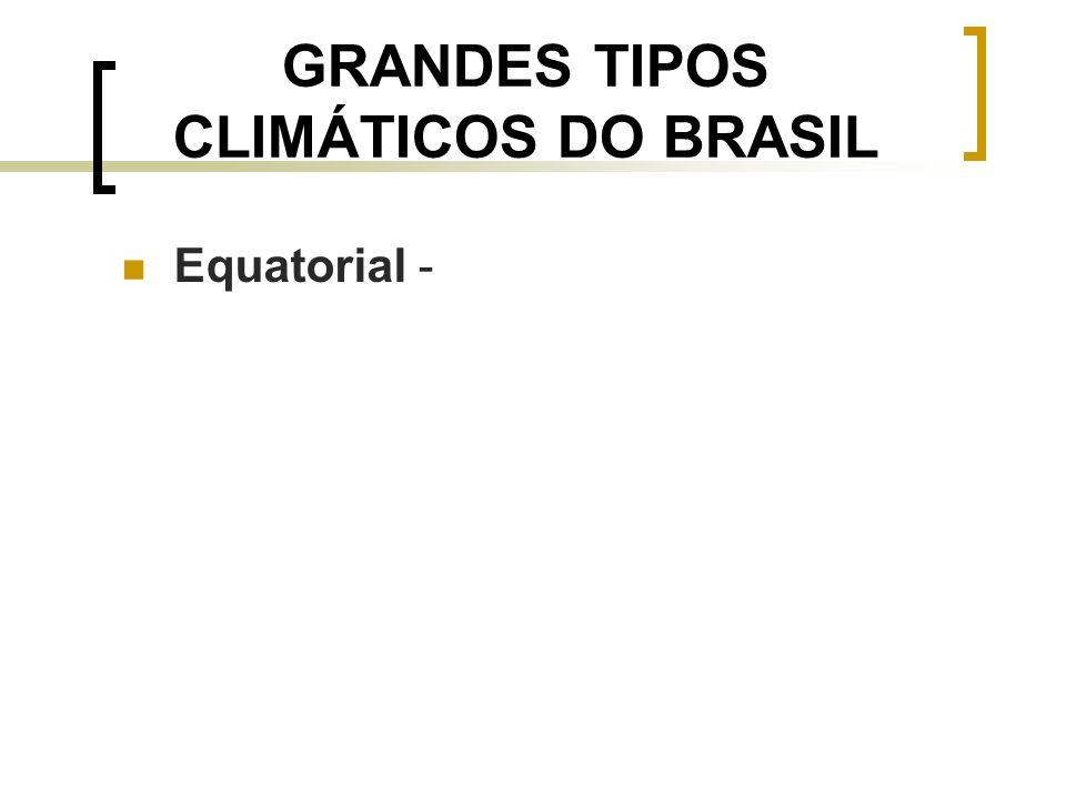 GRANDES TIPOS CLIMÁTICOS DO BRASIL Equatorial -