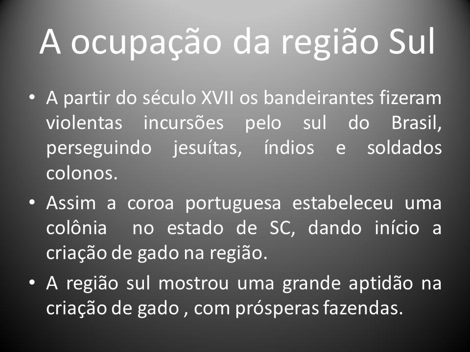 A ocupação da região Sul A partir do século XVII os bandeirantes fizeram violentas incursões pelo sul do Brasil, perseguindo jesuítas, índios e soldad