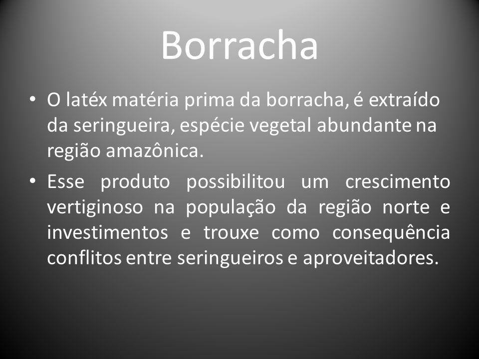 Borracha O latéx matéria prima da borracha, é extraído da seringueira, espécie vegetal abundante na região amazônica. Esse produto possibilitou um cre