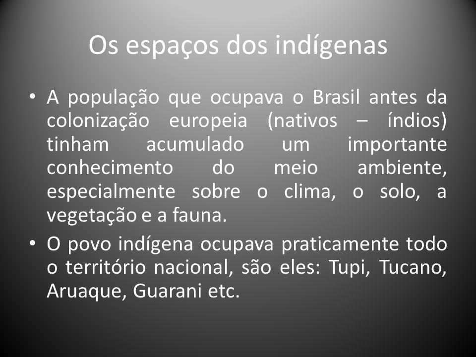Os espaços dos indígenas A população que ocupava o Brasil antes da colonização europeia (nativos – índios) tinham acumulado um importante conhecimento
