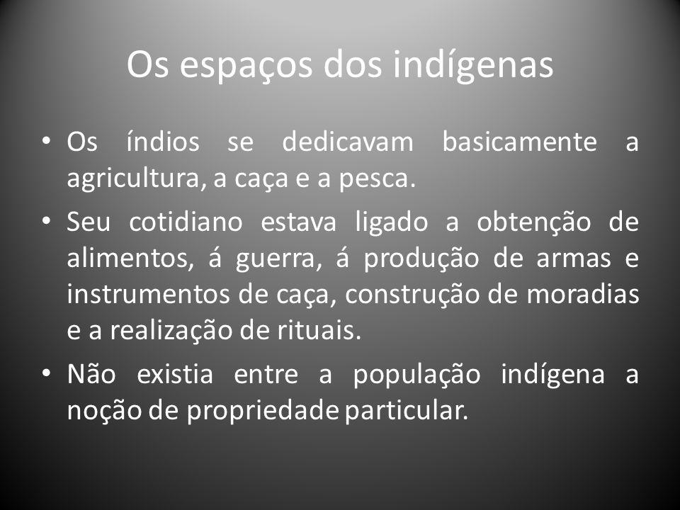 Os espaços dos indígenas Os índios se dedicavam basicamente a agricultura, a caça e a pesca. Seu cotidiano estava ligado a obtenção de alimentos, á gu