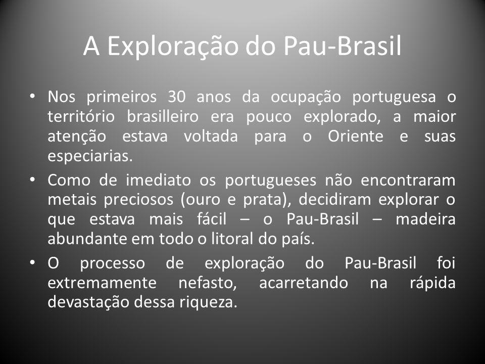 A Exploração do Pau-Brasil Nos primeiros 30 anos da ocupação portuguesa o território brasilleiro era pouco explorado, a maior atenção estava voltada p