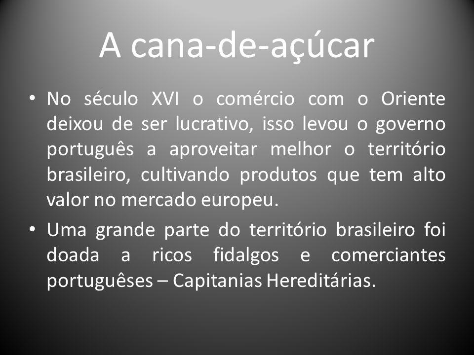 A cana-de-açúcar No século XVI o comércio com o Oriente deixou de ser lucrativo, isso levou o governo português a aproveitar melhor o território brasi