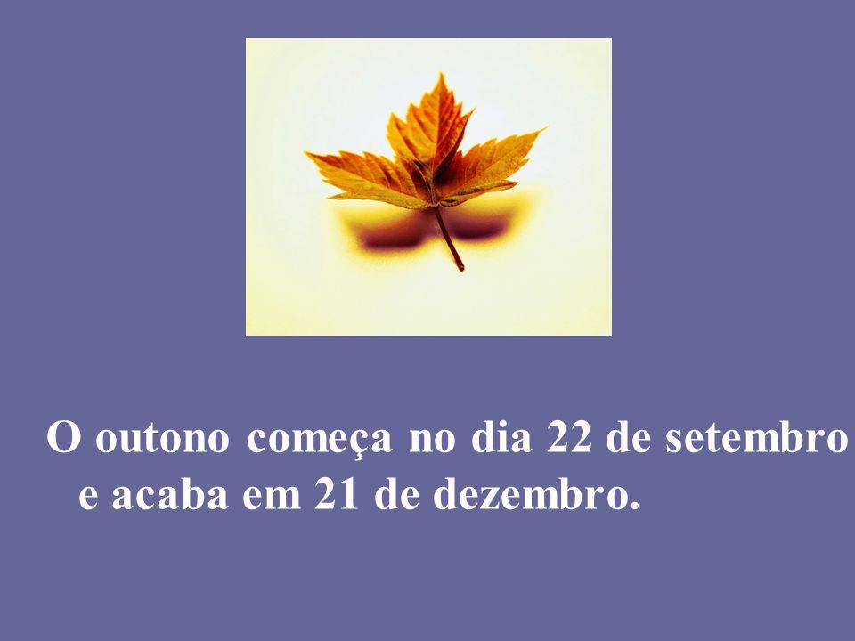 O outono começa no dia 22 de setembro e acaba em 21 de dezembro.