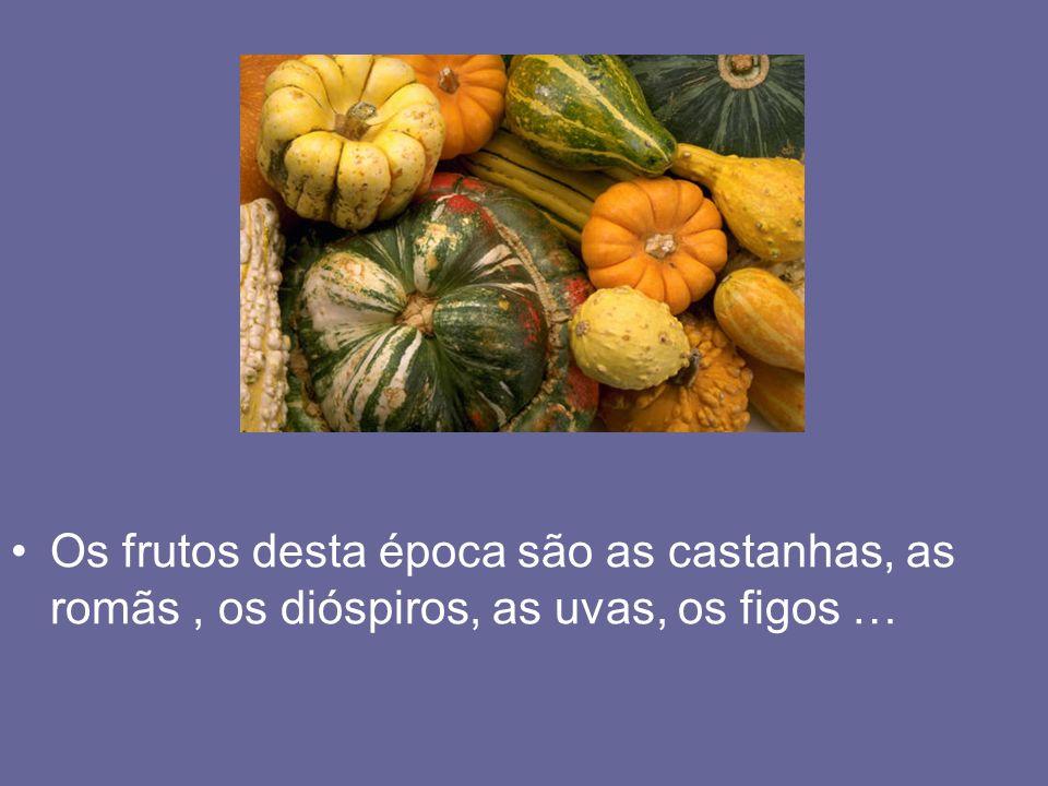 Os frutos desta época são as castanhas, as romãs, os dióspiros, as uvas, os figos …