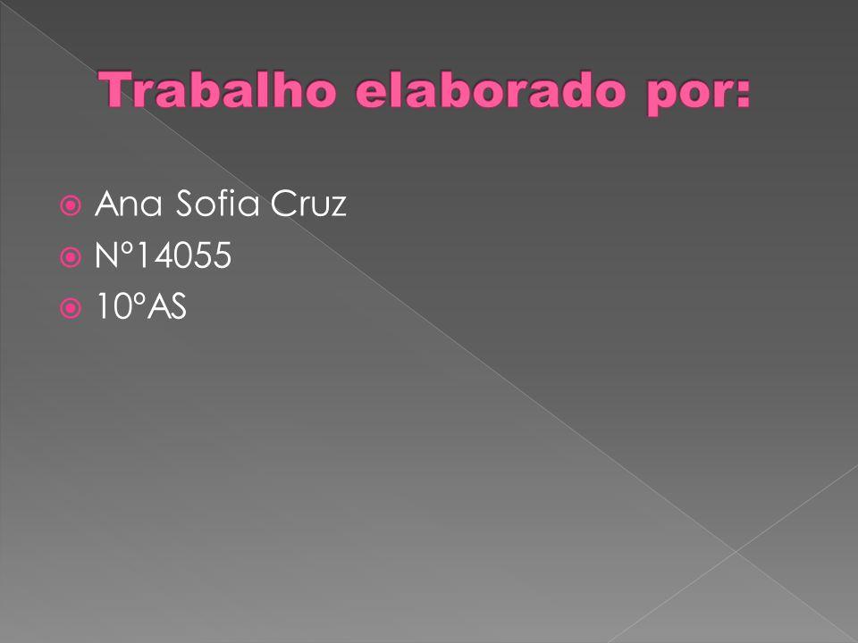 Ana Sofia Cruz Nº14055 10ºAS