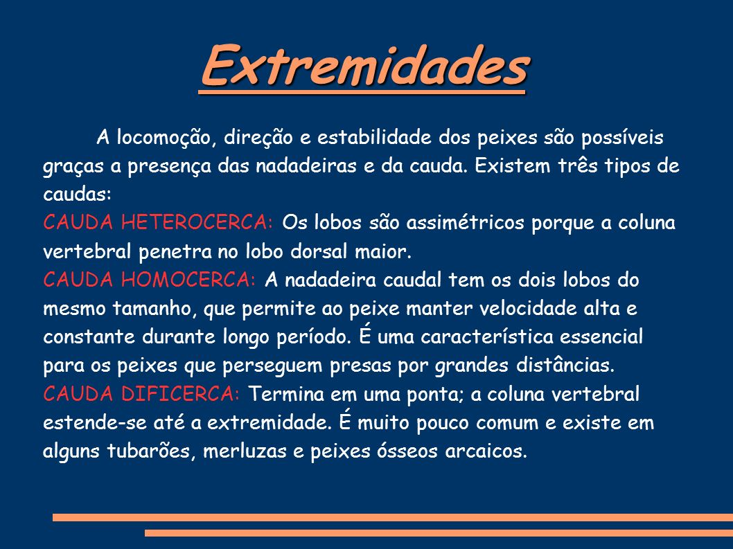 Extremidades A locomoção, direção e estabilidade dos peixes são possíveis graças a presença das nadadeiras e da cauda.