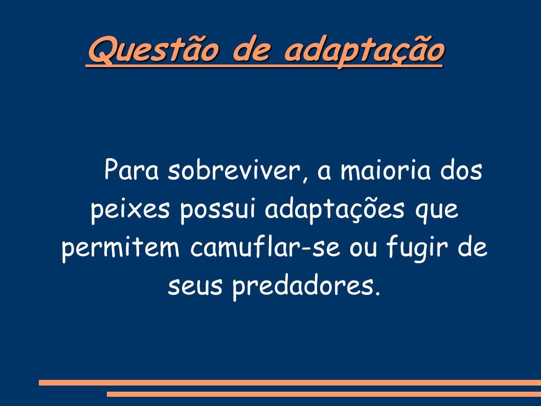 Questão de adaptação Para sobreviver, a maioria dos peixes possui adaptações que permitem camuflar-se ou fugir de seus predadores.
