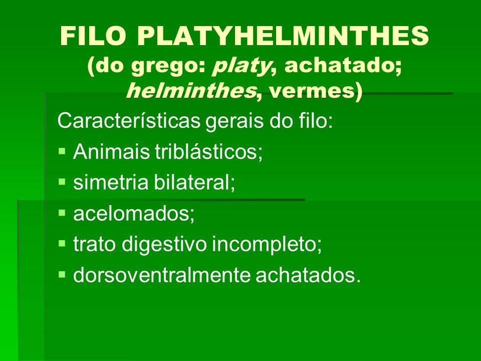 FILO PLATYHELMINTHES (do grego: platy, achatado; helminthes, vermes) Características gerais do filo: Animais triblásticos; simetria bilateral; aceloma