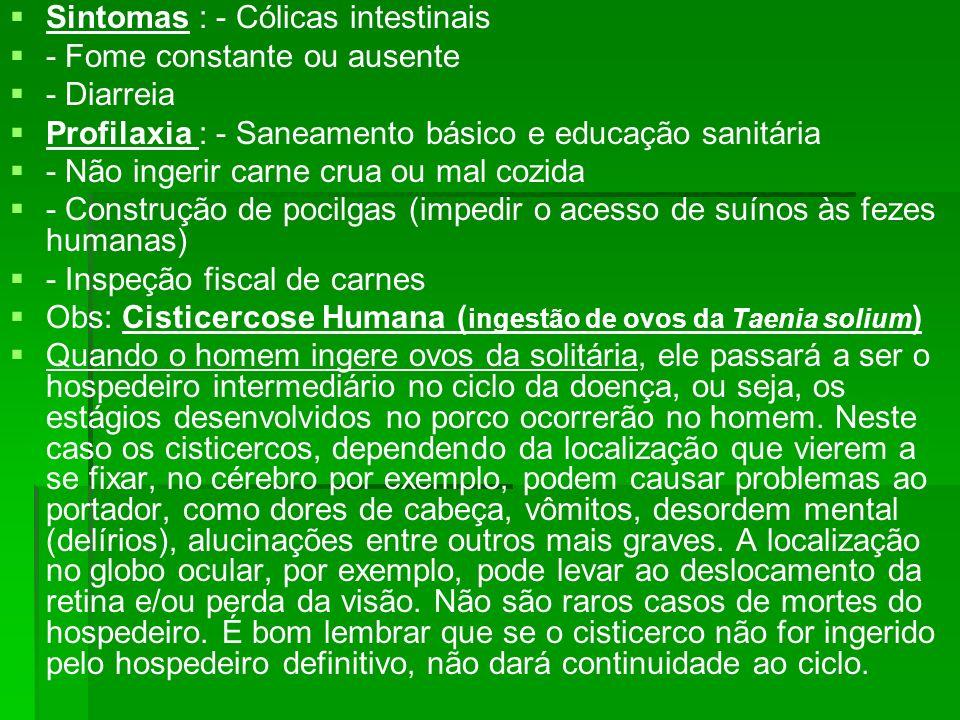 Sintomas : - Cólicas intestinais - Fome constante ou ausente - Diarreia Profilaxia : - Saneamento básico e educação sanitária - Não ingerir carne crua