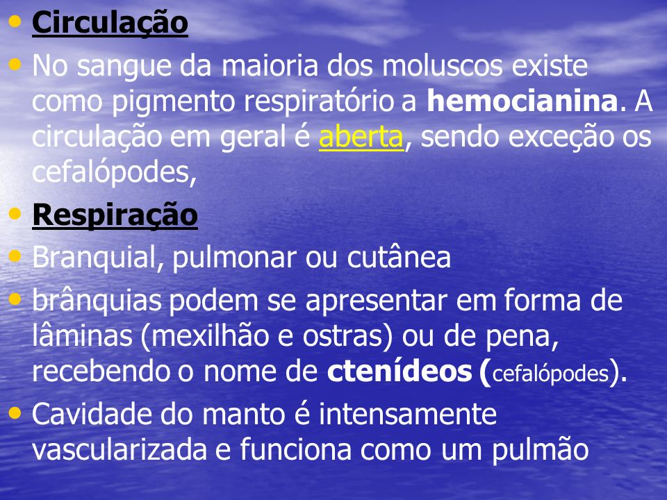 Circulação No sangue da maioria dos moluscos existe como pigmento respiratório a hemocianina. A circulação em geral é aberta, sendo exceção os cefalóp