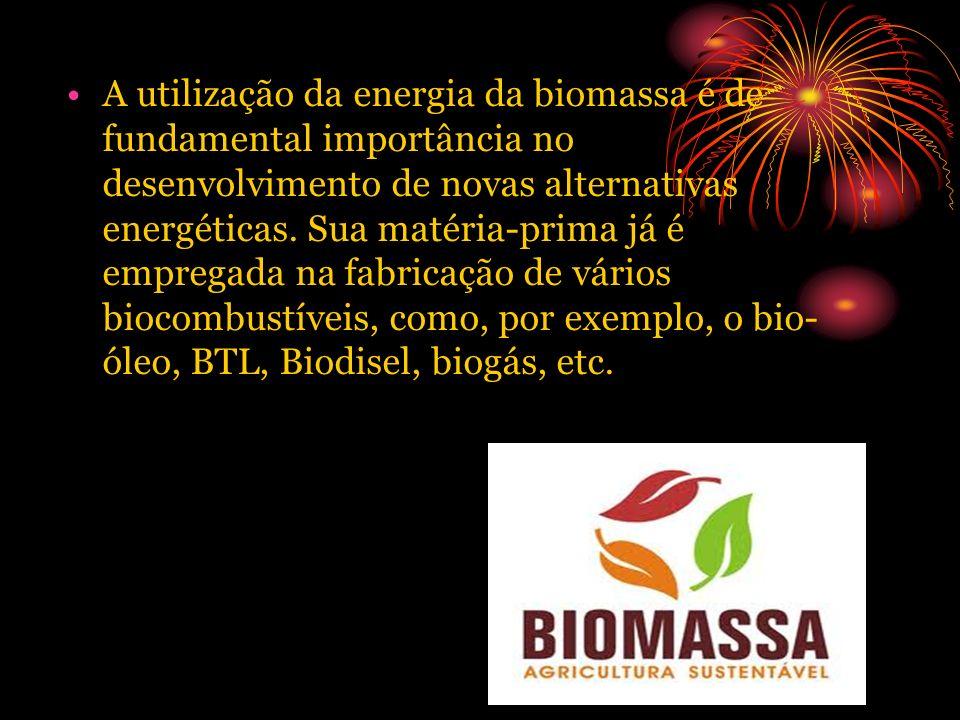 A utilização da energia da biomassa é de fundamental importância no desenvolvimento de novas alternativas energéticas. Sua matéria-prima já é empregad