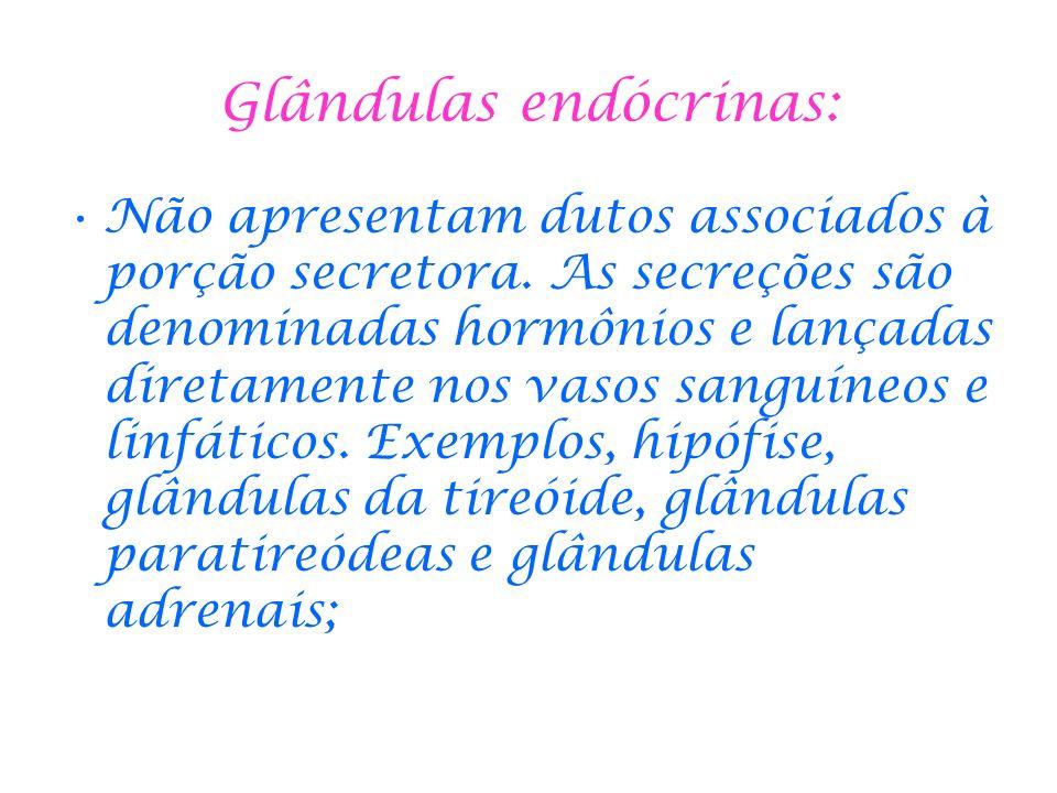 Glândulas endócrinas: Não apresentam dutos associados à porção secretora. As secreções são denominadas hormônios e lançadas diretamente nos vasos sang