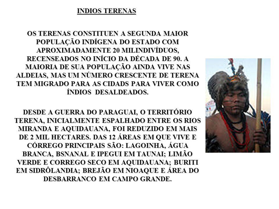 INDIOS TERENAS OS TERENAS CONSTITUEN A SEGUNDA MAIOR POPULAÇÃO INDÍGENA DO ESTADO COM APROXIMADAMENTE 20 MILINDIVÍDUOS, RECENSEADOS NO INÍCIO DA DÉCAD