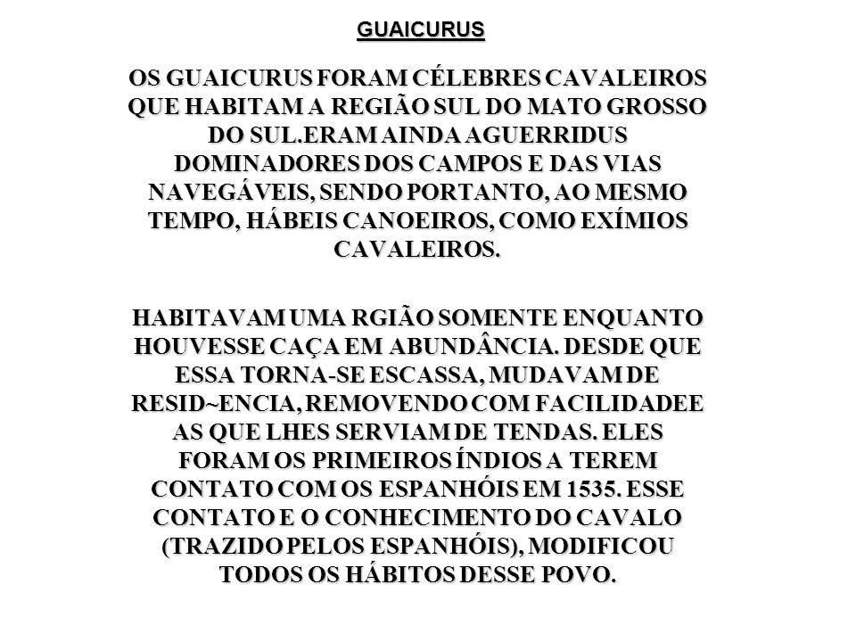 GUAICURUS OS GUAICURUS FORAM CÉLEBRES CAVALEIROS QUE HABITAM A REGIÃO SUL DO MATO GROSSO DO SUL.ERAM AINDA AGUERRIDUS DOMINADORES DOS CAMPOS E DAS VIA